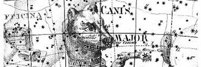 Canis Major Stars