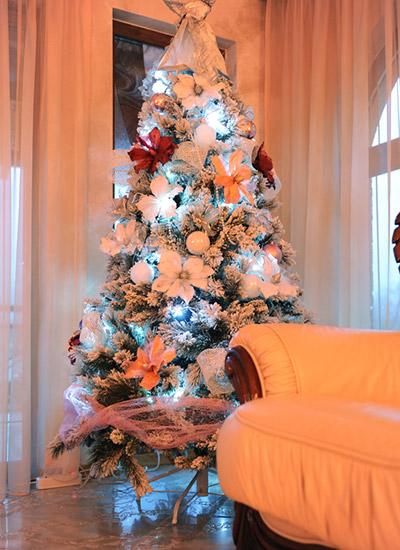 Christmas Decoration Style