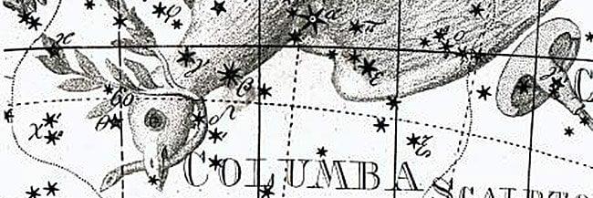Columba Stars