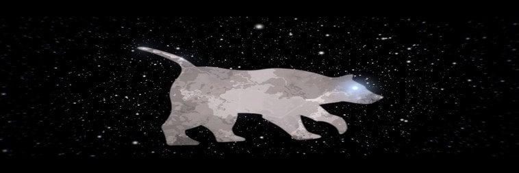 Constelación osa maior