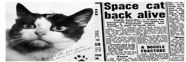 Felicette Space Cat