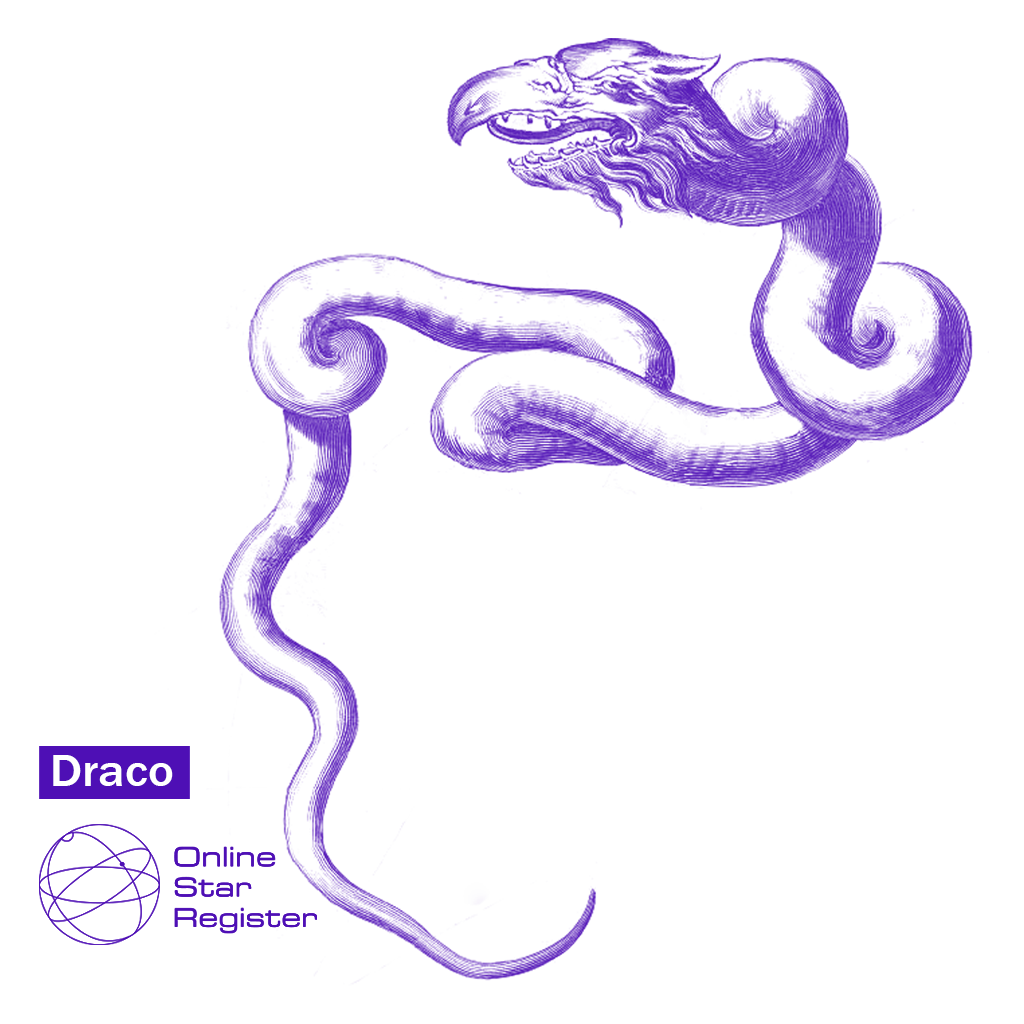 Constellation Draco: gift, map, coordinates and explanation