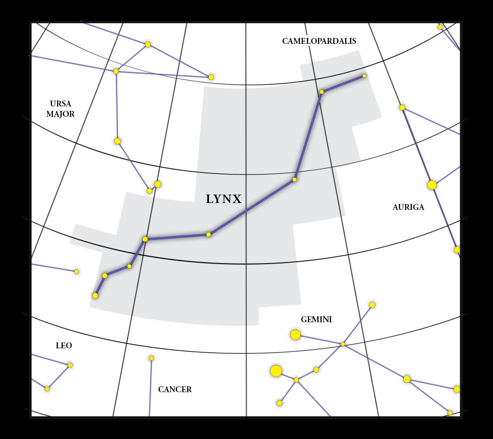 Lynx Constellation Map